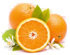 orangen-obst-k