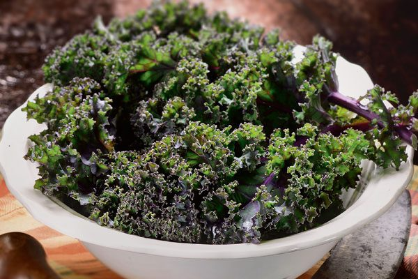 Grünkohl – das Power-Gemüse des Winters