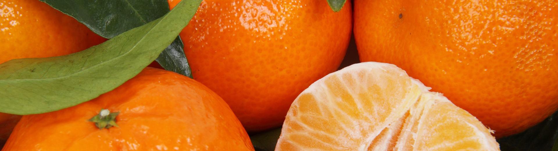Mandarinen und Clementinen –
